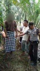 Foto Pria Separuh Baya Tanpa Identitas Ditemukan gantung Diri di Pohon Sawit.-1