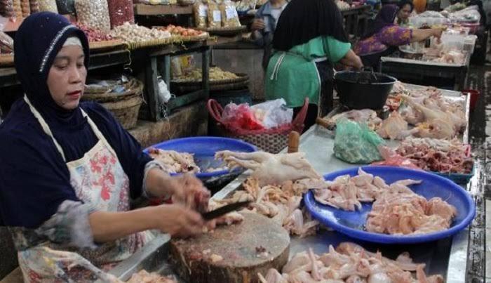 Permalink ke Harga Daging Ayam Broiler di Tiga Pasar Tradisional Tembus Rp 58 Ribu