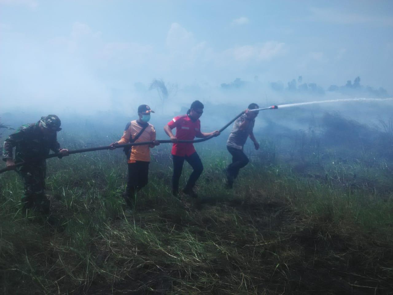 Permalink ke Lahan Gambut di Kecamatan Betara Terbakar Lagi