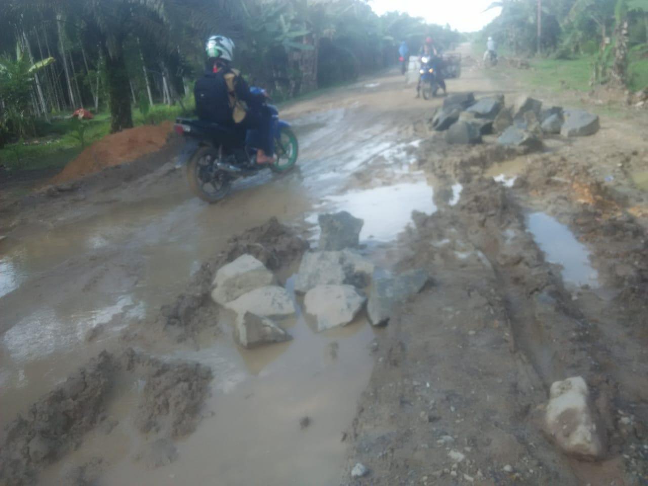 Permalink ke Jalan Lintas Dua Kecamatan Dominan Rusak Parah
