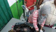 Permalink ke Lima Rumah Terbakar di Lambur Luar Tanjabtim, Bocah 5 Tahun Tewas Terpanggang