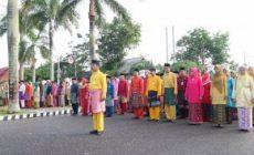 Permalink ke Pemkab Tanjab Barat Gelar Upacara Peringati HUT Provinsi Jambi