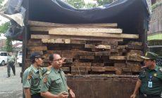 Permalink ke Dishut Provinsi Jambi Buru Pemilik Kayu Ilegal