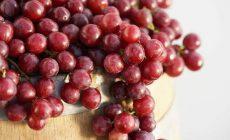 Permalink ke Anggur Kaki Lima Masuk Lab