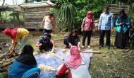 Permalink ke KWT Desa Mandala Jaya Diajari Berternak Belut