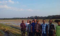 Permalink ke Cek Realisasi Program yang Dia Perjuangkan, H. Bakri Terima Laporan Kebutuhan Petani Mayoritas Irigasi
