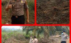Permalink ke Api Padam, Kapolsek Geragai Pasang Police Line Dikebun Warga