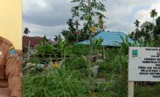 Permalink ke Biar Tak Menggangu Pengguna Jalan, Pemerintah Desa Bunga Tanjung Akan Benahi Pasar