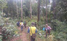 Permalink ke Hutannya Makin Terancam, Warga Durian Rambun Sweeping Perambah