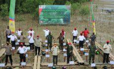 Permalink ke Hari Magrove Sedunia, Bupati Safrial Bersama Gubernur Jambi Tanam Mangrove Sekitaran Pelabuhan Roro