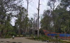 Permalink ke Taman Geopark Merangin Diambang Kehancuran, Keselamatan Pengunjung Terancam