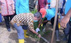 Permalink ke Pemkab Batanghari Berikan Bantuan 14.488 Bibit Sawit Kepada Poktan Sridadi
