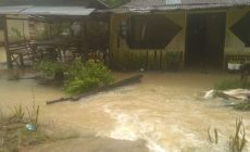 Permalink ke Puluhan Rumah di Desa Bukit Harapan Dilanda Banjir Bandang