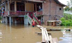 Permalink ke 7 Ribu Rumah Dalam Tujuh Kecamatan di Batanghari Terendam Banjir