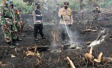Permalink ke Kapolres Muaro Jambi Turun Tangan Padamkan Api di Lahan Kosong 1,5 Hektare yang Terbakar di Desa Muhajirin