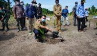 Permalink ke Perkuat Sektor Pertanian, Gubernur Tanam Pinang di Sadu