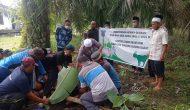 Permalink ke Hari Raya Idul Adha, Pemerintah Kecamatan Bram Itam Qurban Sapi