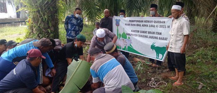 Hari Raya Idul Adha, Pemerintah Kecamatan Bram Itam Qurban Sapi