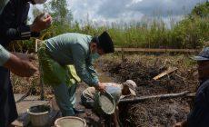 Permalink ke Gubernur Al Haris Letakkan Batu Pertama Pembangunan Rumah Tahfidz Al-Qur'an Ibadurrahman Muara Sabak